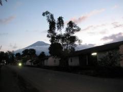 Fire Road- Arusha